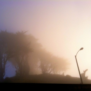 Morning fog at Grand View Park.