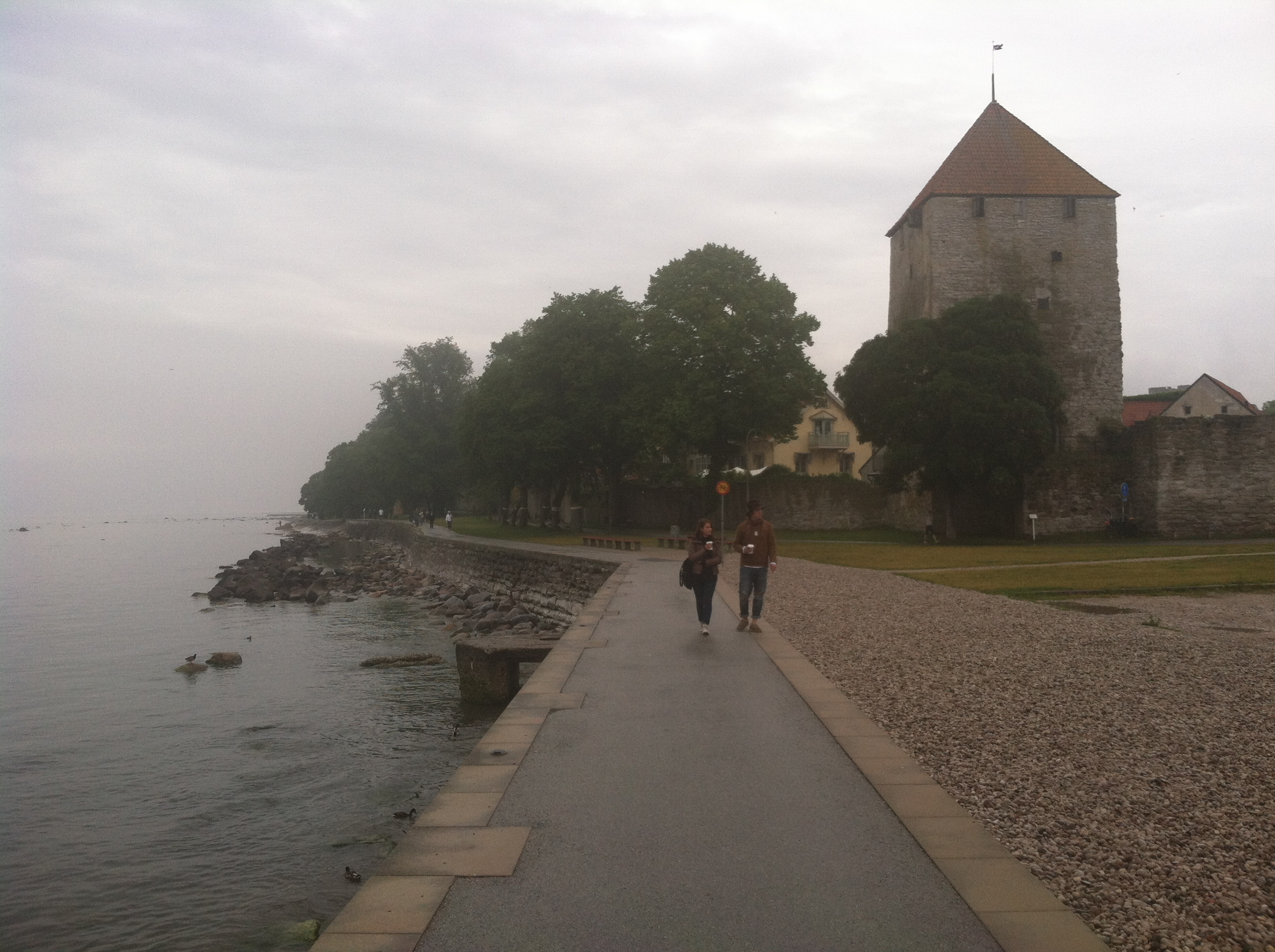 Visby The Floating City Duck Pie