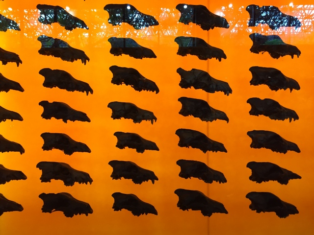 Fossils at the La Brea Tar Pits (Photo: J.S. Graboyes/Duck Pie)